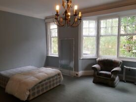 Spacious Room to let in Victorian Villa in the heart of Stoneygate