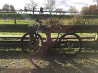 Cannondale push bike