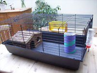 Guinnea pig, rabbit cage