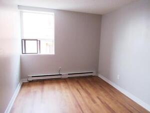 Newly Renovated 2 Bedroom Steps to Gage Park + FIRST MONTH FREE