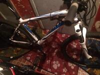 Giant mountain bike for swap