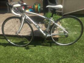 Dolce Specialized road bike