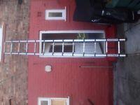 telescope ladder