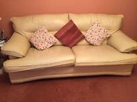 Leather 3 and 2 seater