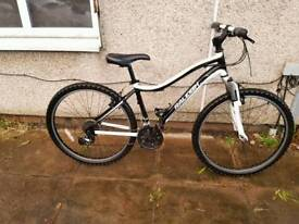 Raleigh mountain bike with 26 inch wheel size
