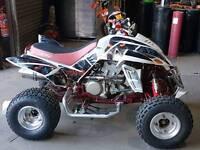 Quadzilla 450 beast