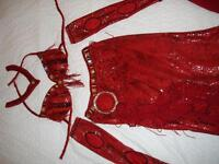 "Belly Dance Professional Costume ""Red Hot Snakeskin"""
