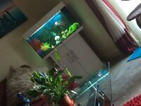 125ltr Fish Tank for sale