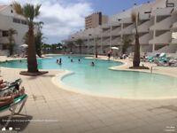 Lovely apartment - Paloma beach - Tenerife