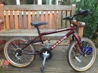 Stormer Shadow Child's Bike
