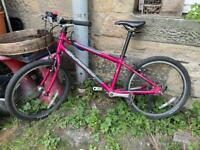 Islabike Beinn 20 (L) Pink