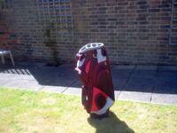 Golf Cart Bag,