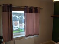 Pale Purple/Pink Eyelet Curtains (168x137 cm)