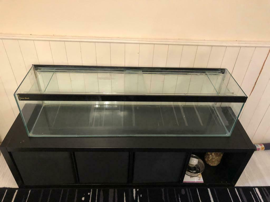 Verrassend Hamster Aquarium | in Basingstoke, Hampshire | Gumtree ML-99