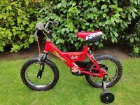 Kids Raleigh Mini Bike