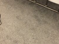 Grey/blue carpet in excellent condition