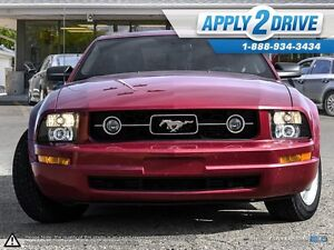 2008 Ford Mustang  Leather, Cold Air, Throttle Spacer, Pypes Edmonton Edmonton Area image 2