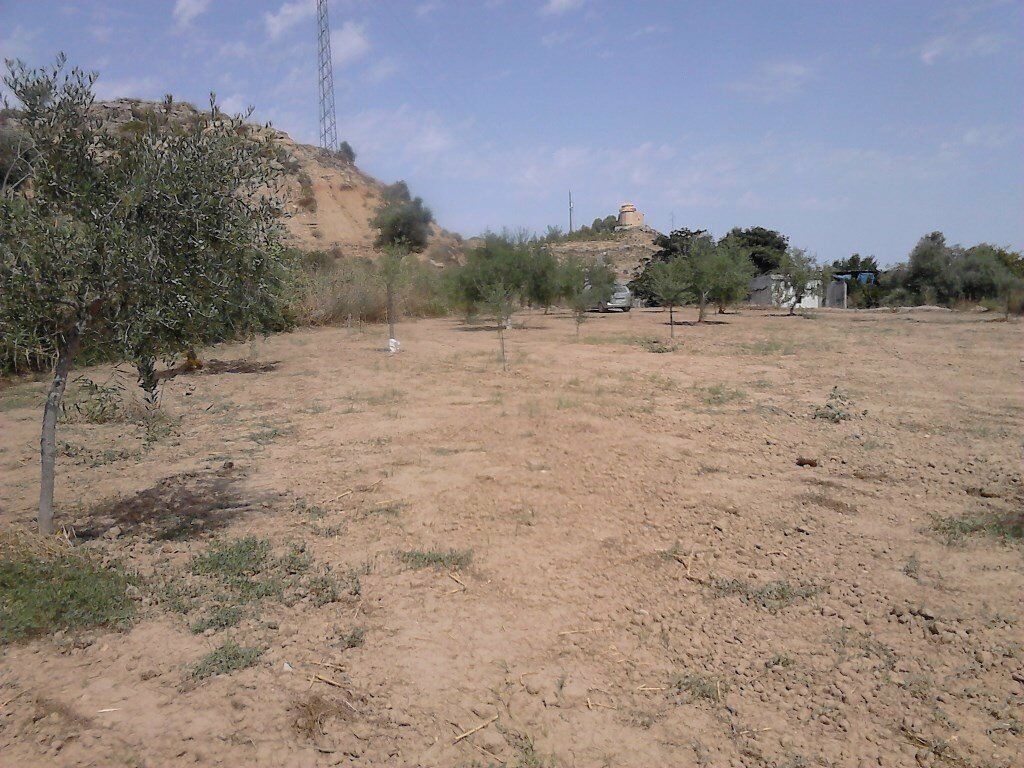 d5a48bd74a1256 Land In Maella 50710 Spain With Water. Hythe