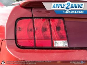 2008 Ford Mustang  Leather, Cold Air, Throttle Spacer, Pypes Edmonton Edmonton Area image 12