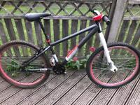 26 inch Mesh bike