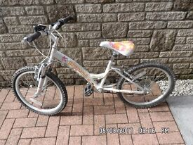 Childs Bicycle (Probably suit 5-8 yr old)