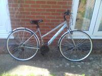 Ladies Apollo Hybrid Sport Virtue Bicycle