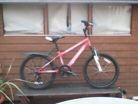 Girls Pink MT Power Bike (up to 10 years)