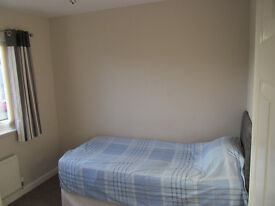 Single Room available in 3 Bed House