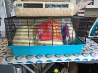 Practically new hamster cage with everything you need including accessories and bedding!