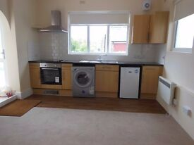 AMAZING STUDIO FLAT AVAILABLE NOW IN WOOD GREEN N22 *DSS CONSIDERED*