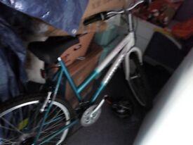 Adult / Girls bike