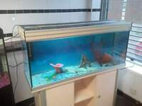 AQUA ONE 240 4FT FISH TANK FULL SETUP WITH CABINET