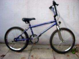 """Kids BMX Bike, Skedaddle, Purple, 20 """" Wheels are Great for Kids 7+, JUST SERVICED / CHEAP PRICE!!!!"""