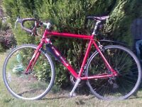 Red Road Bike bit rusty, one punctured tire and front brake does not work.