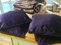 Next purple rug, curtains and four bhs cushions