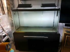 Fluval osaka 320L stand and extra tank