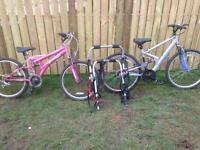 Two Girls bikes and a universal bike carrier £100