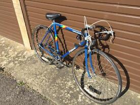 Falcon Rapier Mens Racer. Lovely Condition. Serviced, Free D-Lock, Lights, Delivery