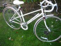 Perfect retro/vintage Raleigh.