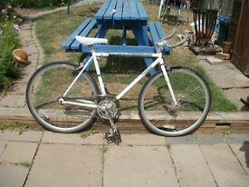 Single Gear Road Bike