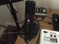 sE 2200a II MP Studio Condenser Microphone