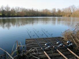 carp course match fly fishing tackle gear setups wanted for cash please phone cash waiting