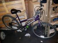 Ladies Mountain bike 18 speed grip shift gears