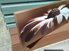 Flower pictures X 3...box type