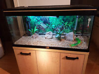 AQUA ONE 200 LITER FISH TANK AND STAND FOR SALE IN PERFECT USED CONDITIONS,,FULL SET UP