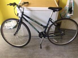 Cheap bicycle