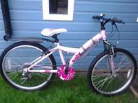 "Pretty, Roadworthy, Girls Apollo 24"" Wheel Bike*****FREE DELIVERY HULL*****"