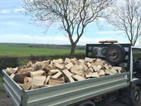 Seasoned Firewood Logs - Ready to burn!
