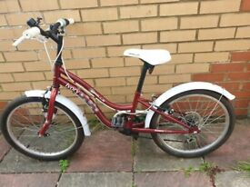 Apollo Ivory cycle (20inch wheels bike, immaculate & serviced) with mud guards free collection
