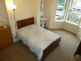 Stranmillis: Double room, ground floor, whb, in 5 bed share house